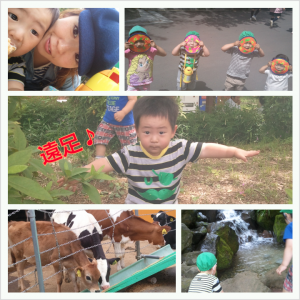PhotoGrid_1369752513548.png